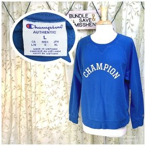 EUC CHAMPION VINTAGE BLUE PULL OVER SWEATER